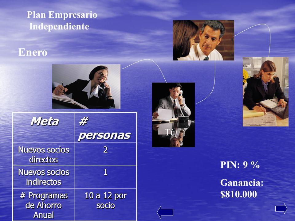 Enero Meta # personas Plan Empresario Independiente Tú PIN: 9 %