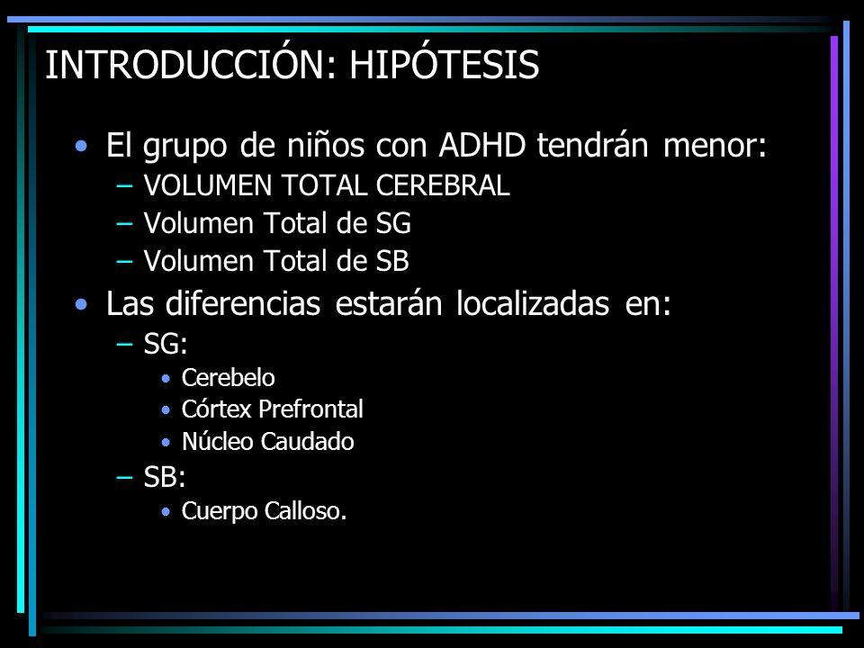 INTRODUCCIÓN: HIPÓTESIS