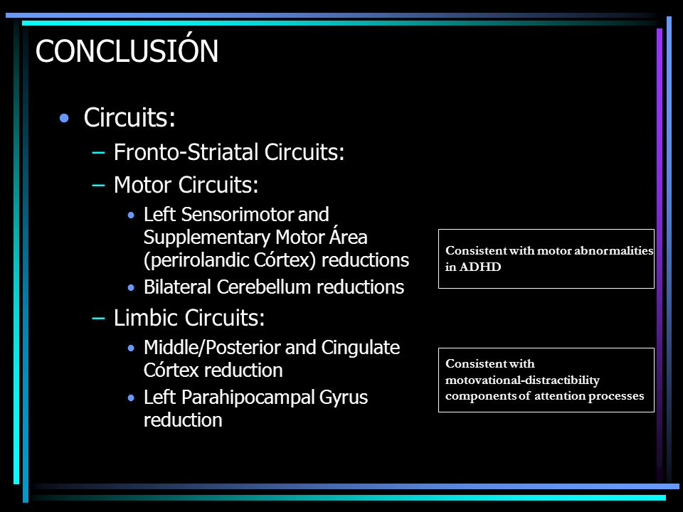 CONCLUSIÓN Circuits: Fronto-Striatal Circuits: Motor Circuits: