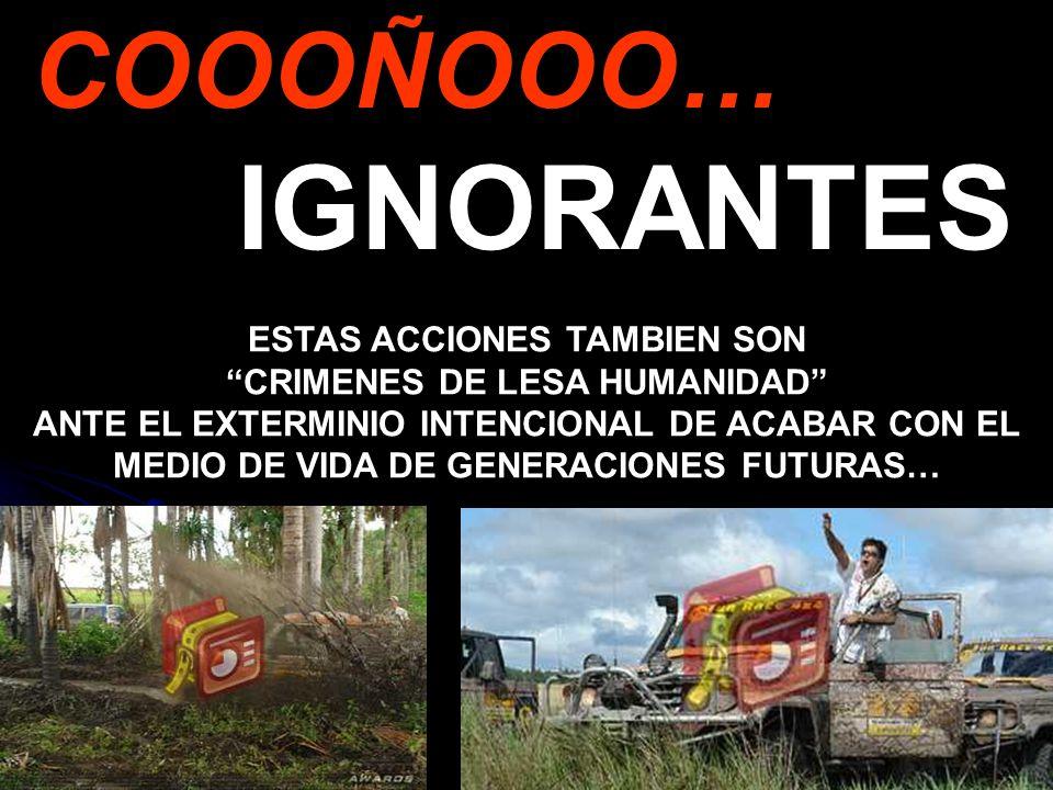 ESTAS ACCIONES TAMBIEN SON CRIMENES DE LESA HUMANIDAD
