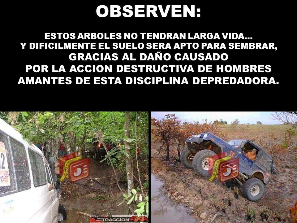 OBSERVEN: GRACIAS AL DAÑO CAUSADO POR LA ACCION DESTRUCTIVA DE HOMBRES