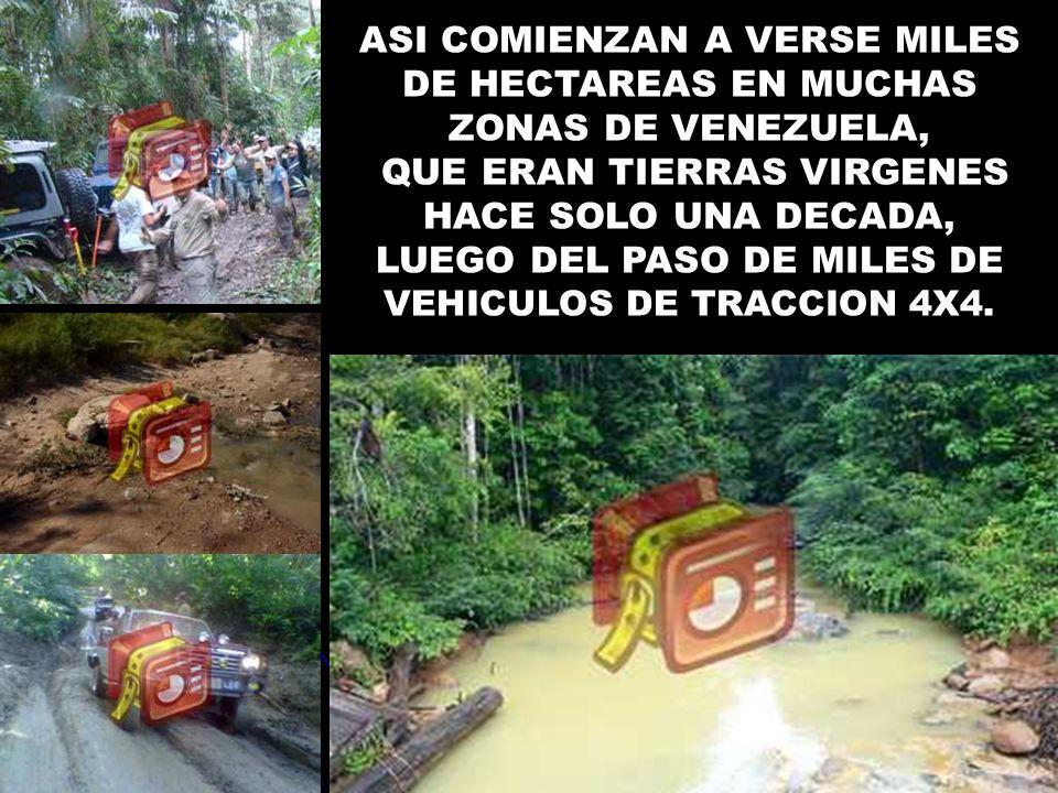 ASI COMIENZAN A VERSE MILES DE HECTAREAS EN MUCHAS ZONAS DE VENEZUELA,