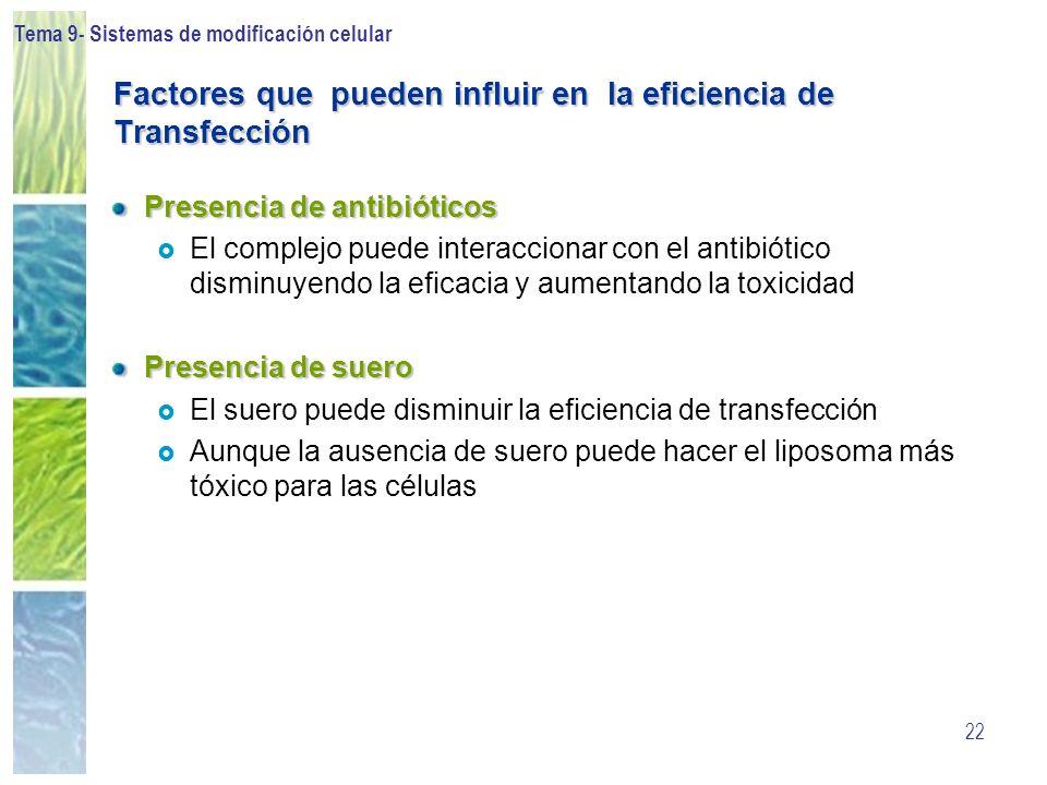 Factores que pueden influir en la eficiencia de Transfección