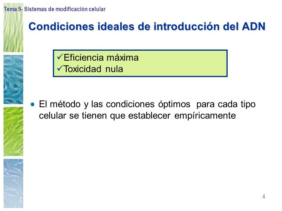 Condiciones ideales de introducción del ADN