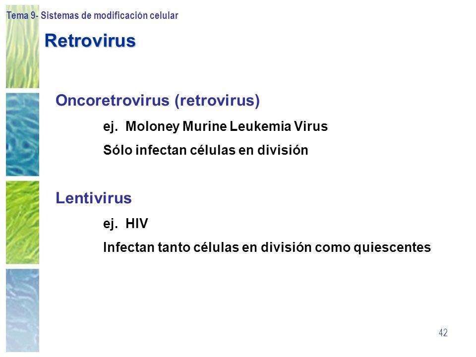 Retrovirus Oncoretrovirus (retrovirus) Lentivirus