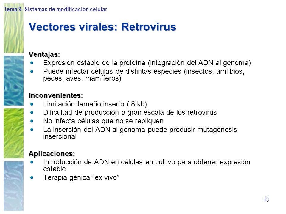 Vectores virales: Retrovirus