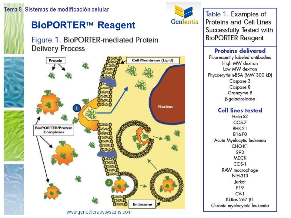 BioPORTER Reagent Tema 9- Sistemas de modificación celular