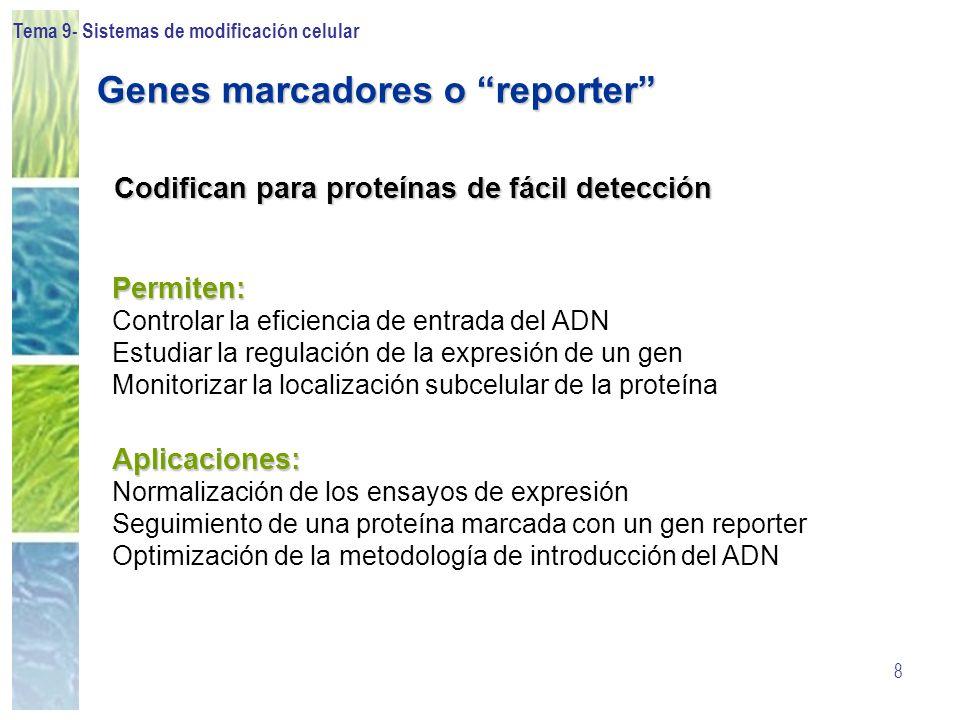 Genes marcadores o reporter