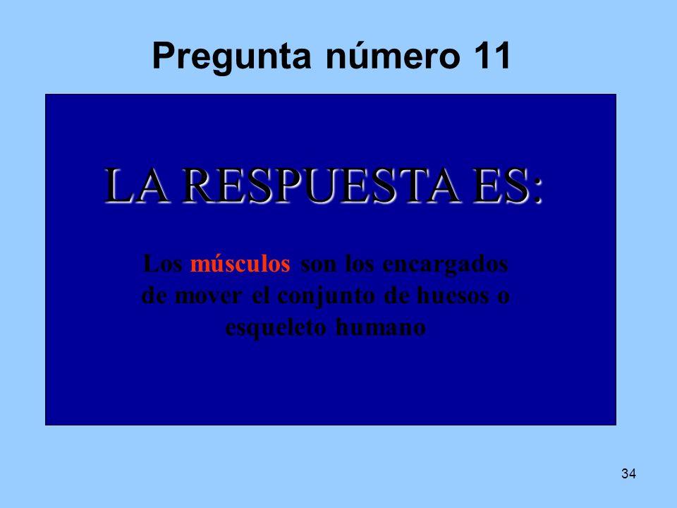6 4 7 1 2 8 3 9 10 5 LA RESPUESTA ES: Pregunta número 11