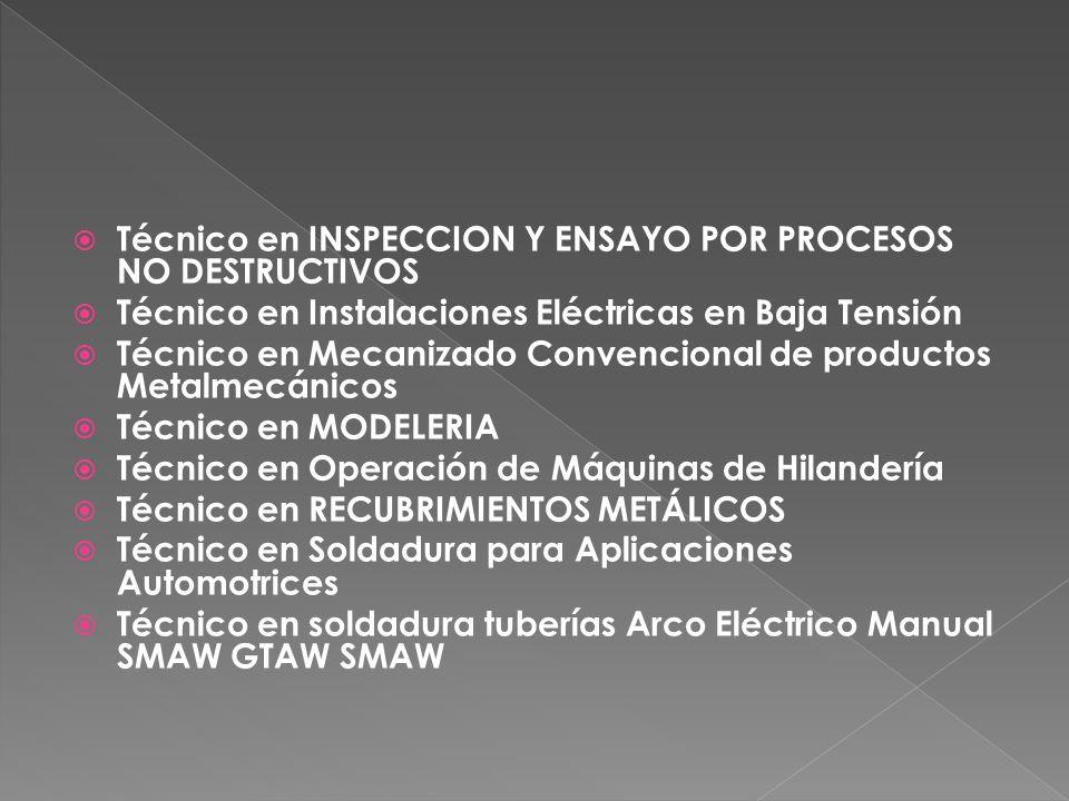 Técnico en INSPECCION Y ENSAYO POR PROCESOS NO DESTRUCTIVOS