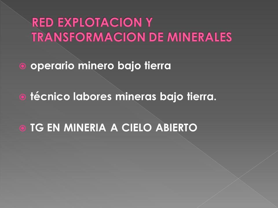 RED EXPLOTACION Y TRANSFORMACION DE MINERALES