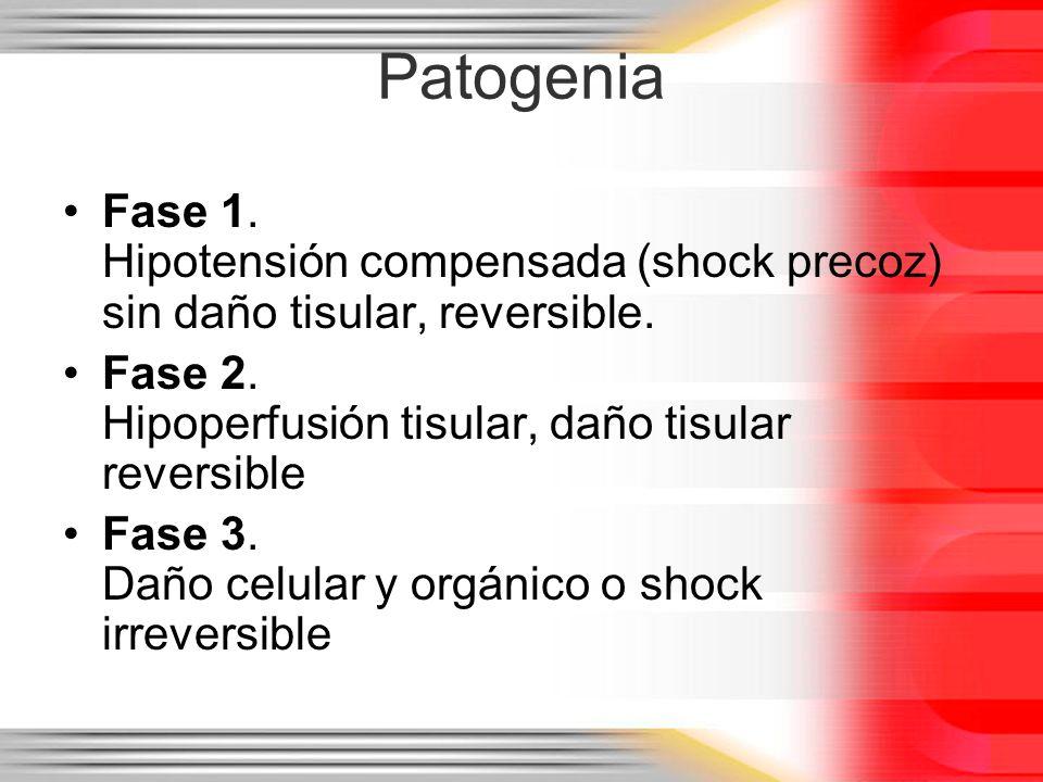 Patogenia Fase 1. Hipotensión compensada (shock precoz) sin daño tisular, reversible. Fase 2. Hipoperfusión tisular, daño tisular reversible.