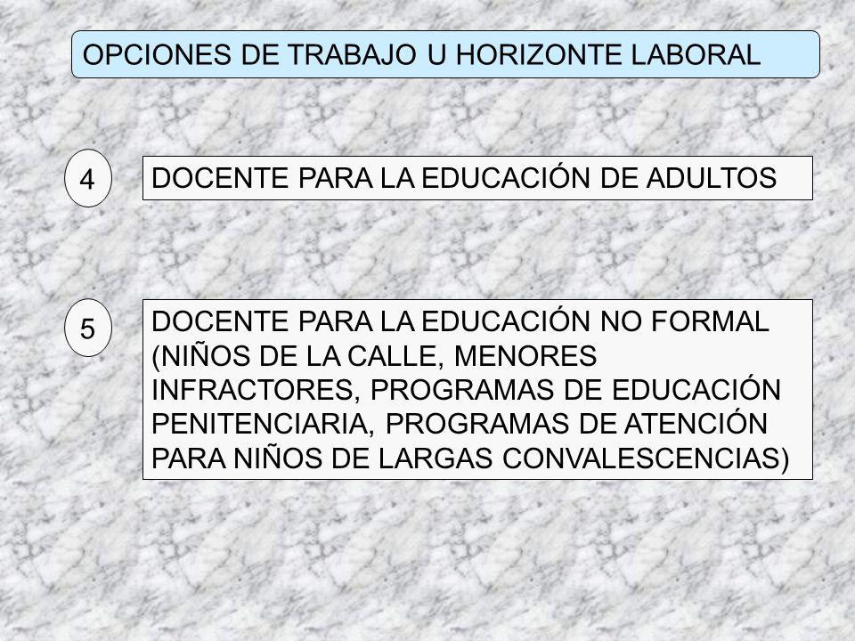 OPCIONES DE TRABAJO U HORIZONTE LABORAL