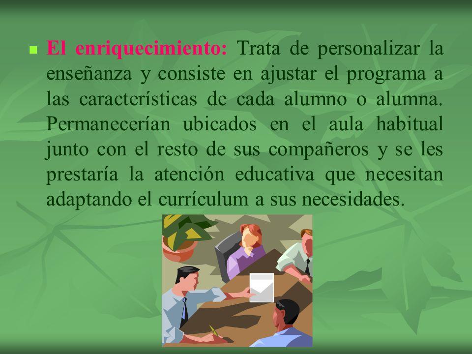 El enriquecimiento: Trata de personalizar la enseñanza y consiste en ajustar el programa a las características de cada alumno o alumna.