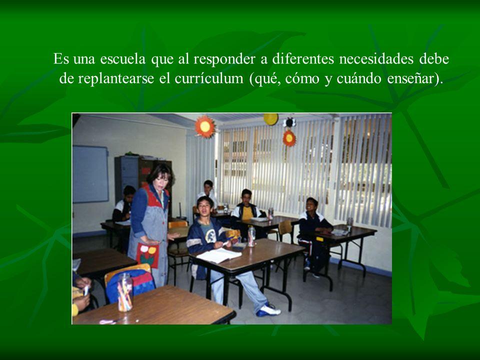 Es una escuela que al responder a diferentes necesidades debe de replantearse el currículum (qué, cómo y cuándo enseñar).