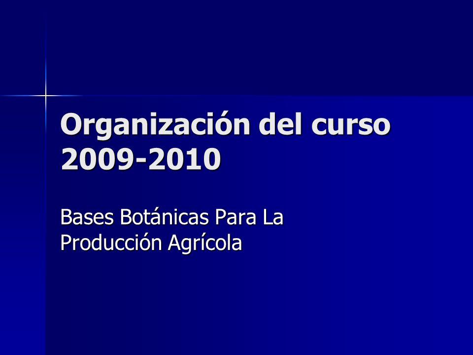 Organización del curso 2009-2010