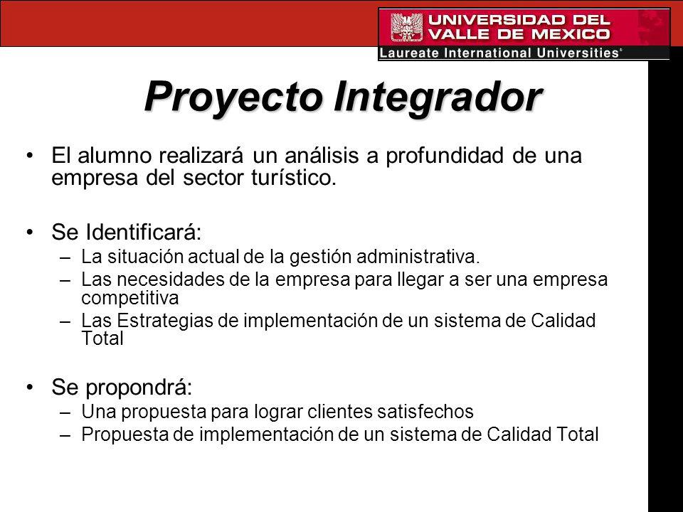 Proyecto Integrador El alumno realizará un análisis a profundidad de una empresa del sector turístico.