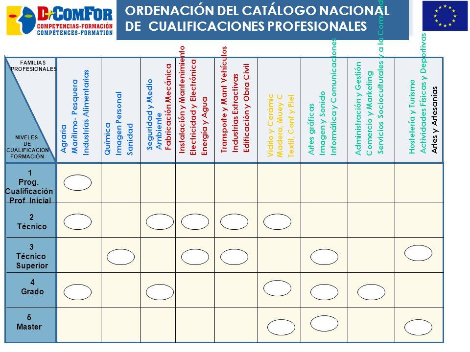 ORDENACIÓN DEL CATÁLOGO NACIONAL DE CUALIFICACIONES PROFESIONALES
