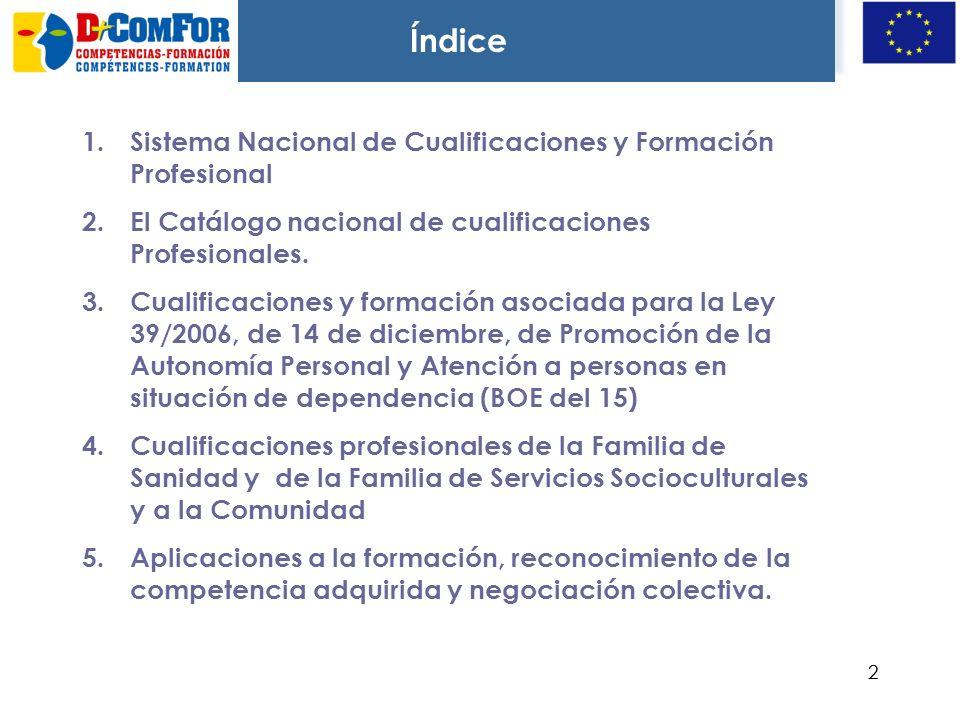 Índice Sistema Nacional de Cualificaciones y Formación Profesional