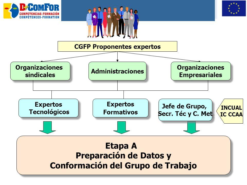 CGFP Proponentes expertos Conformación del Grupo de Trabajo