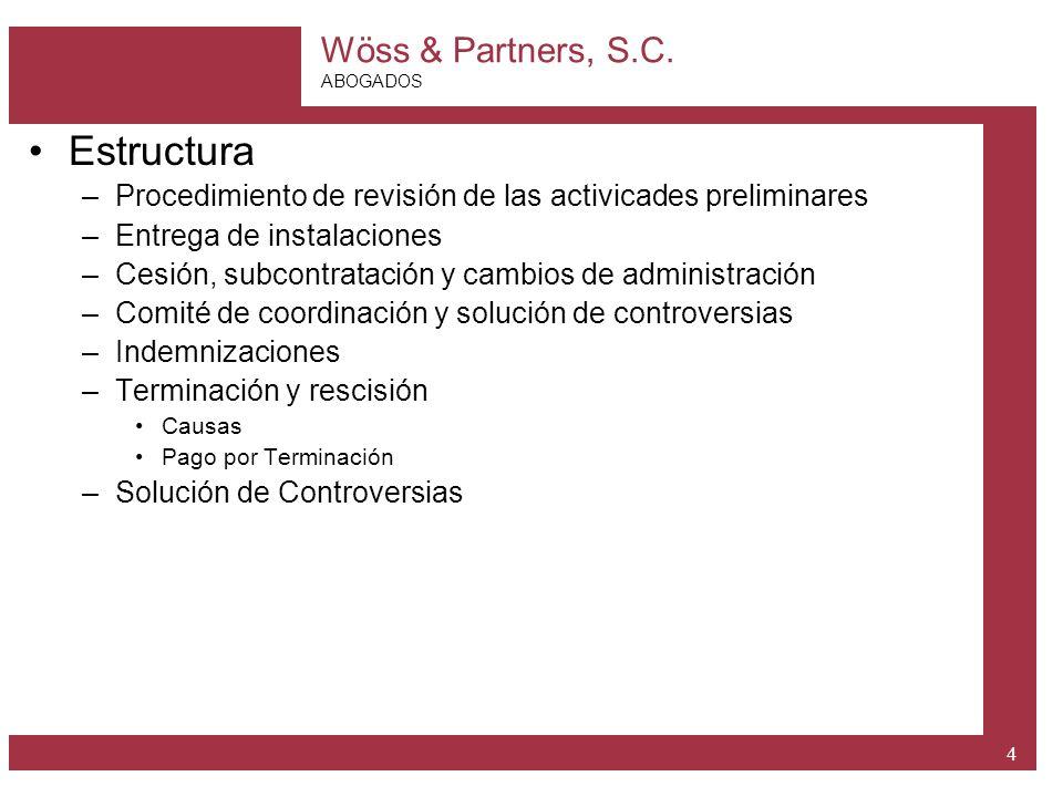 Estructura Procedimiento de revisión de las activicades preliminares