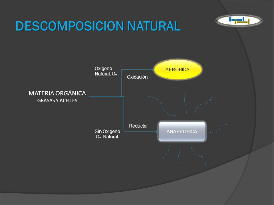 DESCOMPOSICION NATURAL