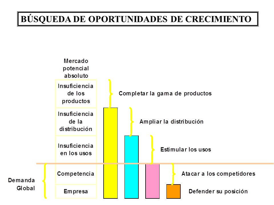 BÚSQUEDA DE OPORTUNIDADES DE CRECIMIENTO