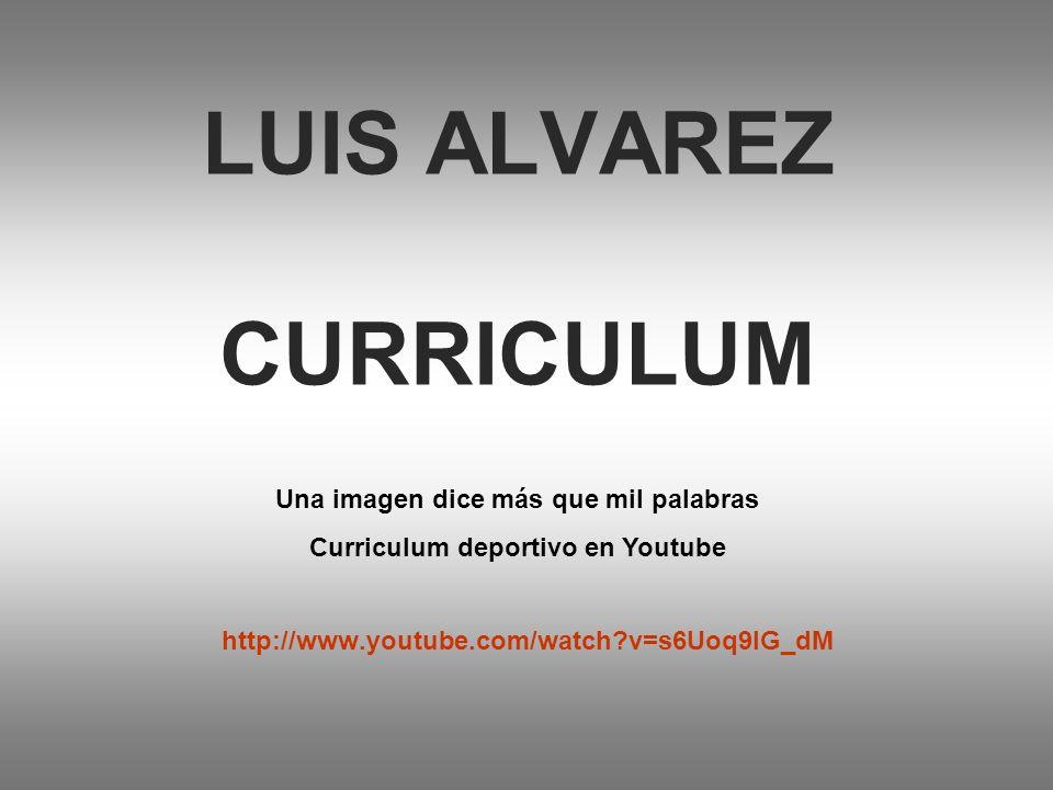 LUIS ALVAREZ CURRICULUM