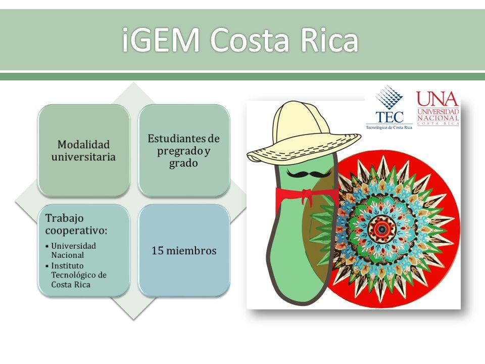 iGEM Costa Rica Modalidad universitaria