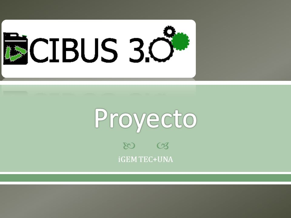 Proyecto iGEM TEC+UNA