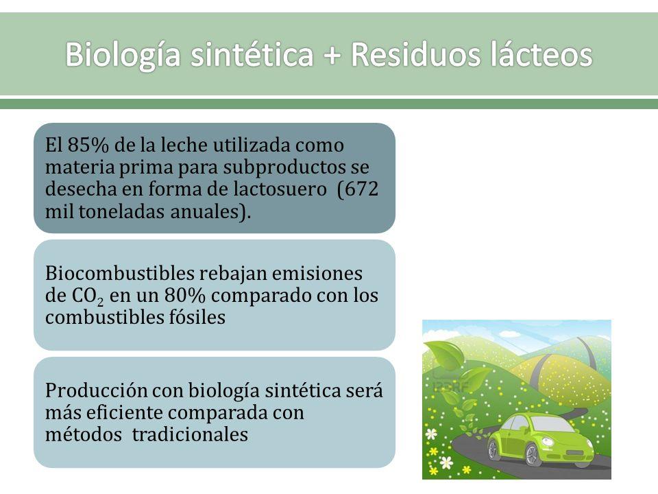 Biología sintética + Residuos lácteos