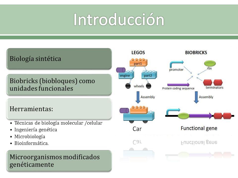 Introducción Biología sintética