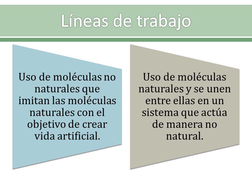 Líneas de trabajo Uso de moléculas no naturales que imitan las moléculas naturales con el objetivo de crear vida artificial.