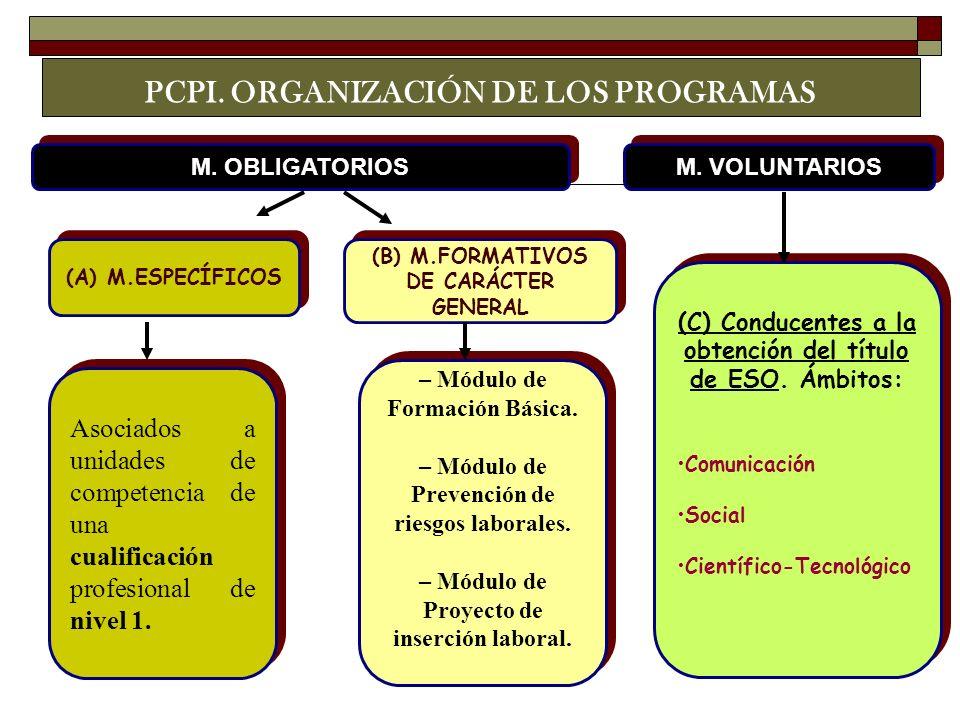 PCPI. ORGANIZACIÓN DE LOS PROGRAMAS