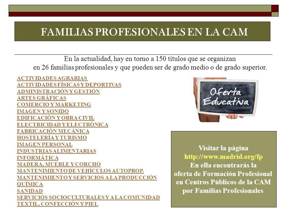 FAMILIAS PROFESIONALES EN LA CAM