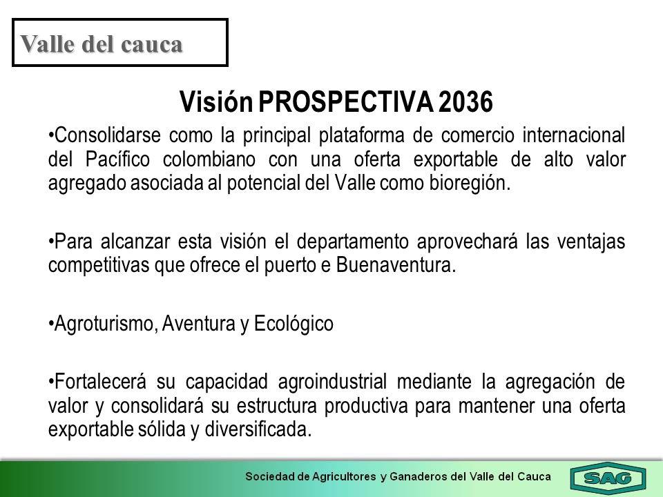 Visión PROSPECTIVA 2036 Valle del cauca