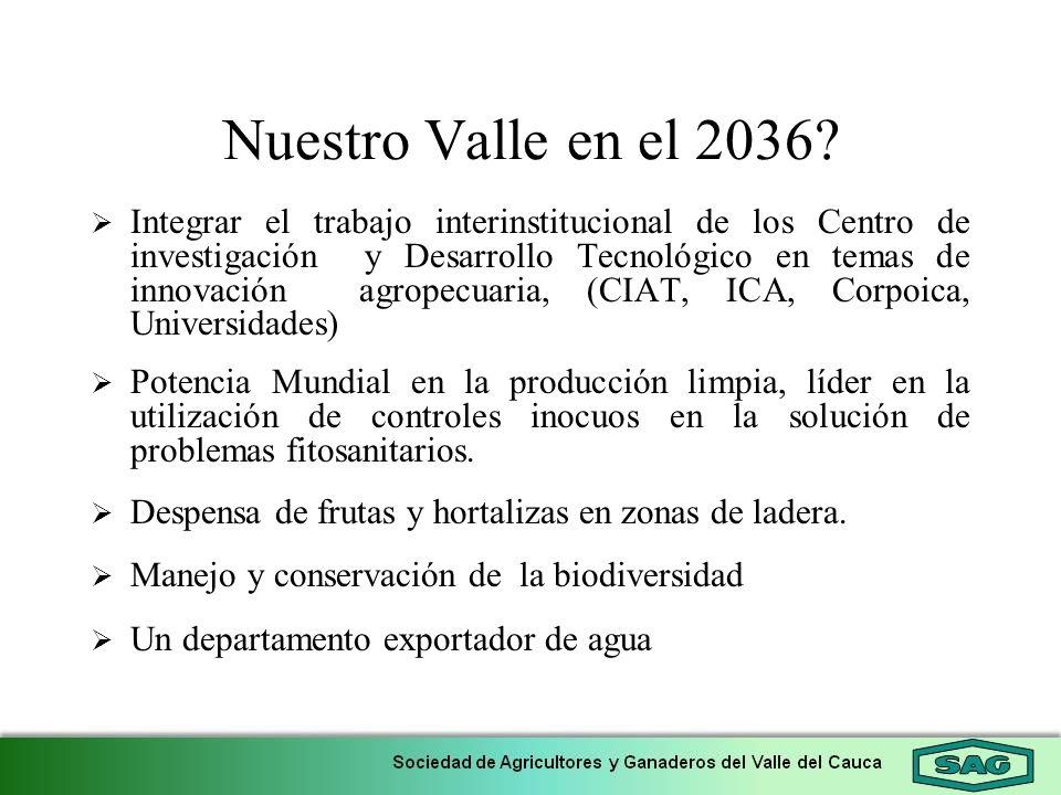 Nuestro Valle en el 2036