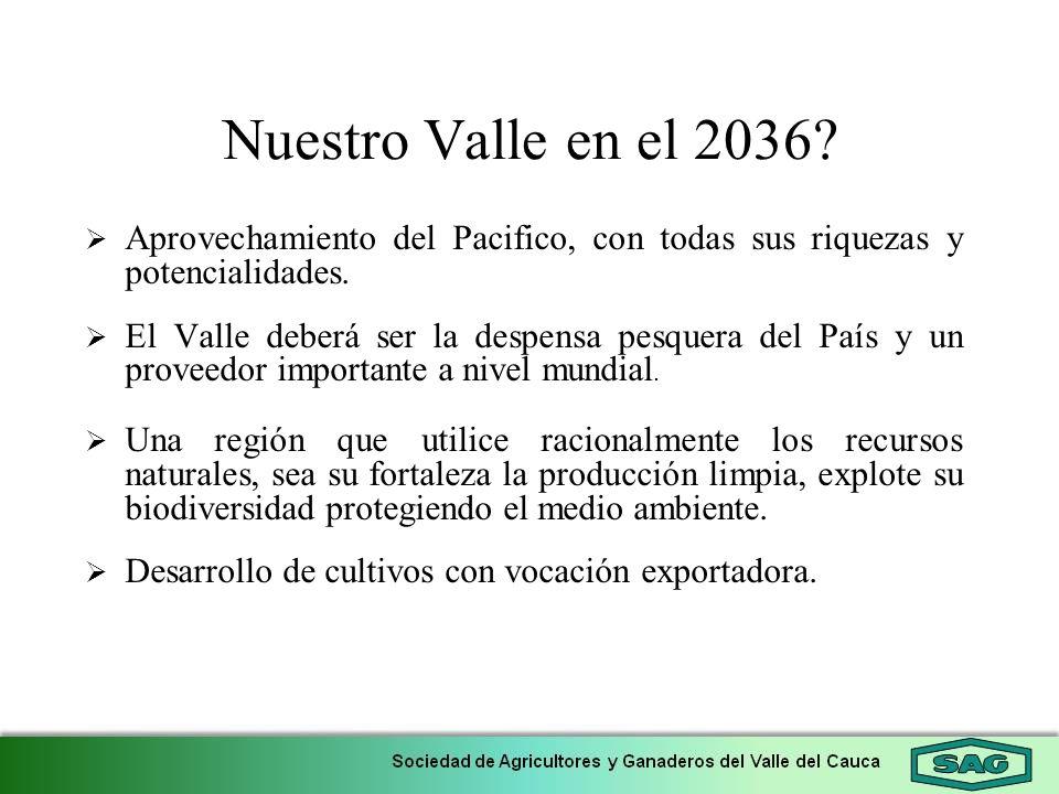 Nuestro Valle en el 2036 Aprovechamiento del Pacifico, con todas sus riquezas y potencialidades.
