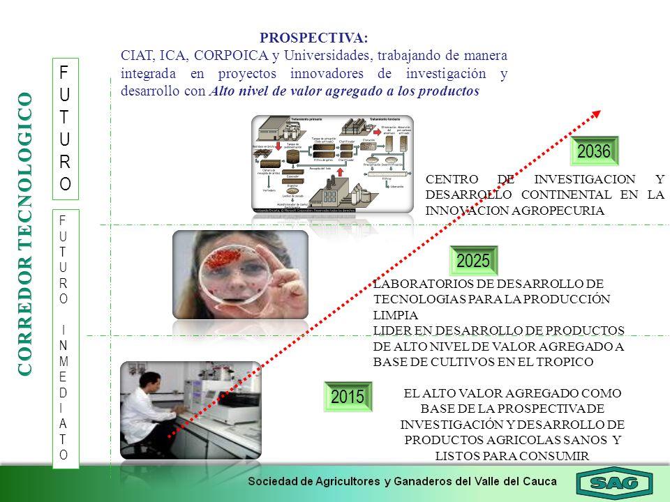 F U T R O 2036 CORREDOR TECNOLOGICO 2025 2015