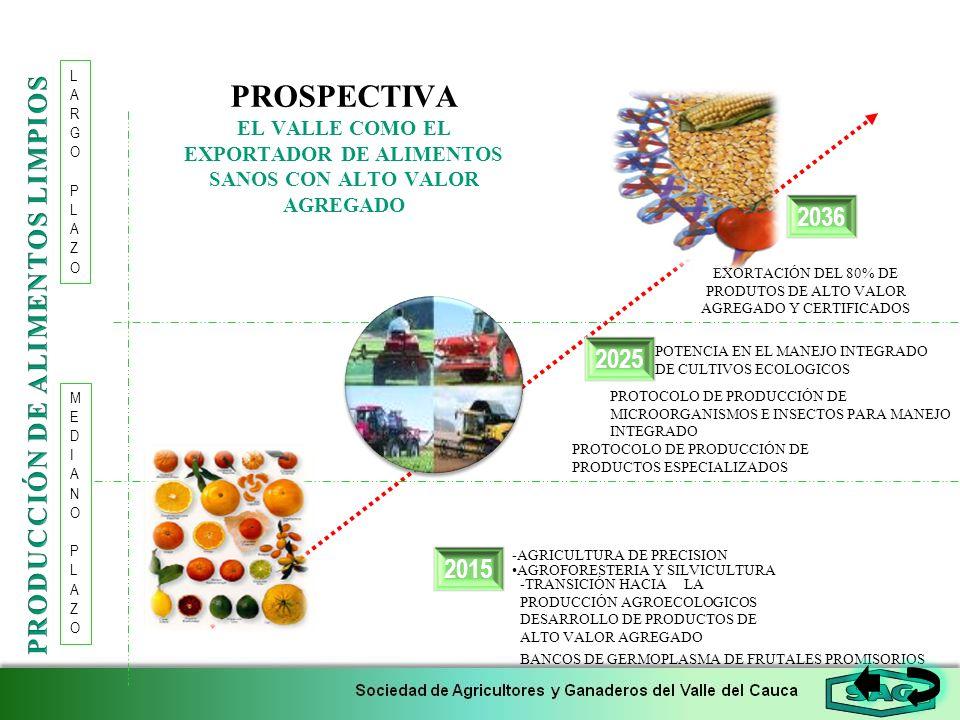 PRODUCCIÓN DE ALIMENTOS LIMPIOS