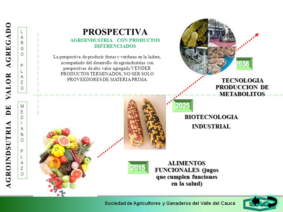 PROSPECTIVA AGROINDUSTRIA CON PRODUCTOS DIFERENCIADOS