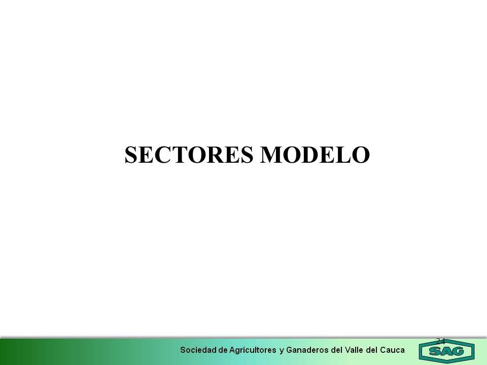 SECTORES MODELO