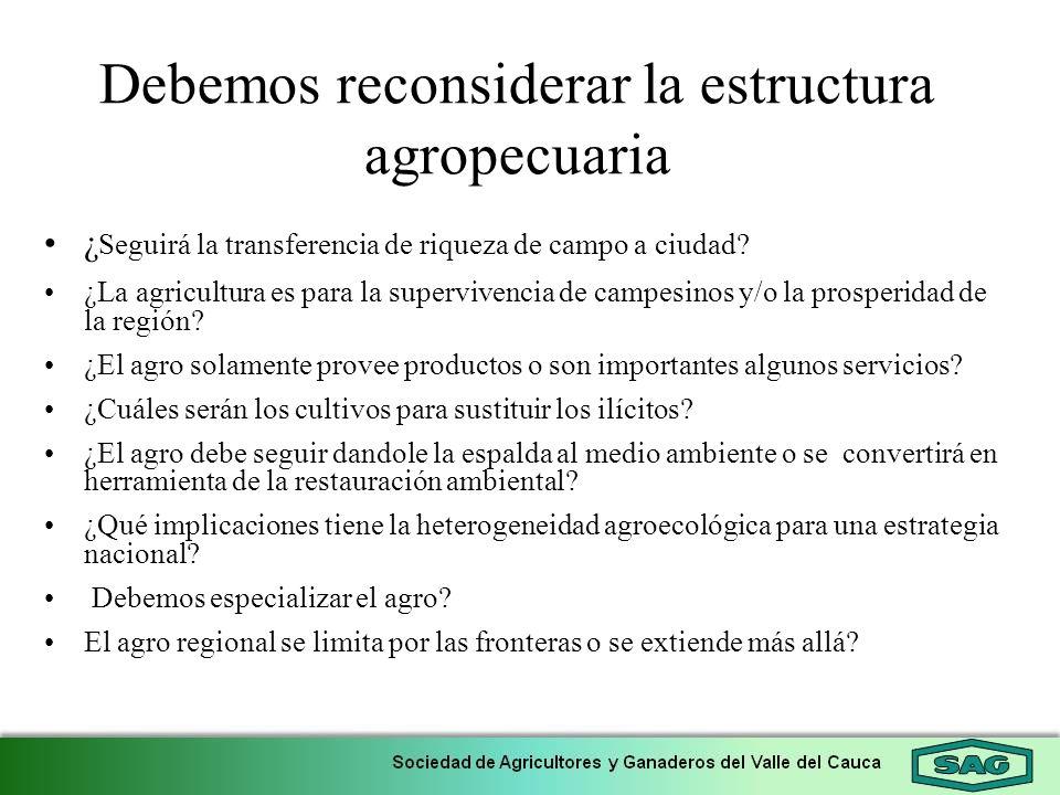 Debemos reconsiderar la estructura agropecuaria