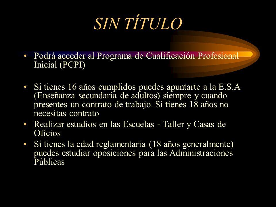 SIN TÍTULO Podrá acceder al Programa de Cualificación Profesional Inicial (PCPI)