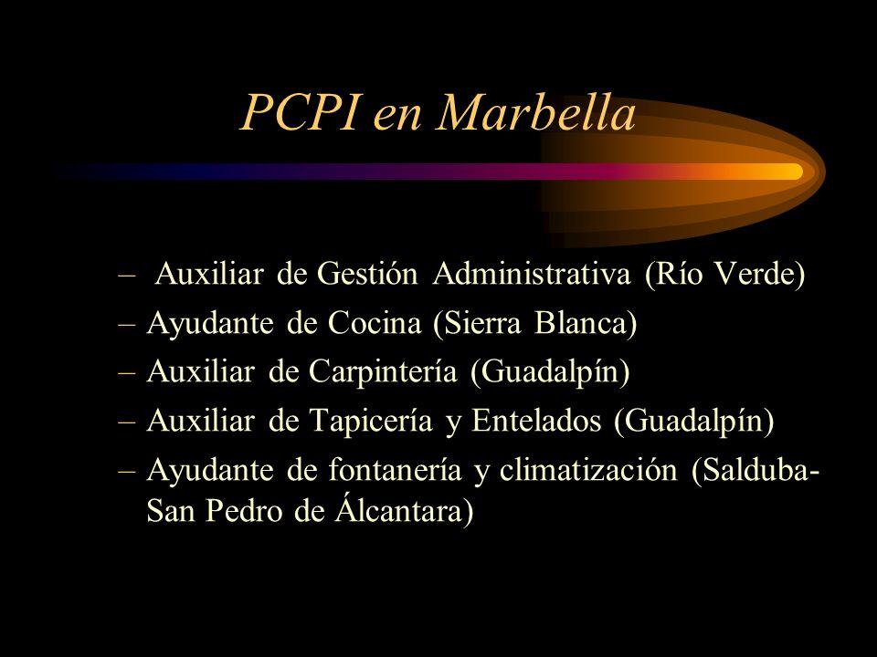 PCPI en Marbella Auxiliar de Gestión Administrativa (Río Verde)