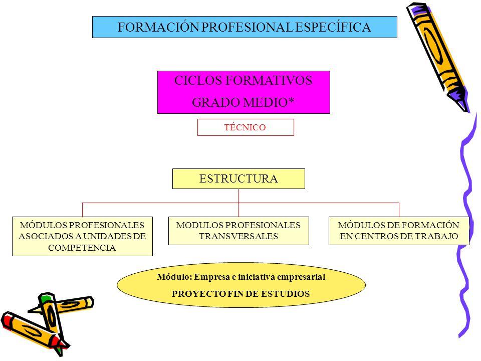 Módulo: Empresa e iniciativa empresarial PROYECTO FIN DE ESTUDIOS