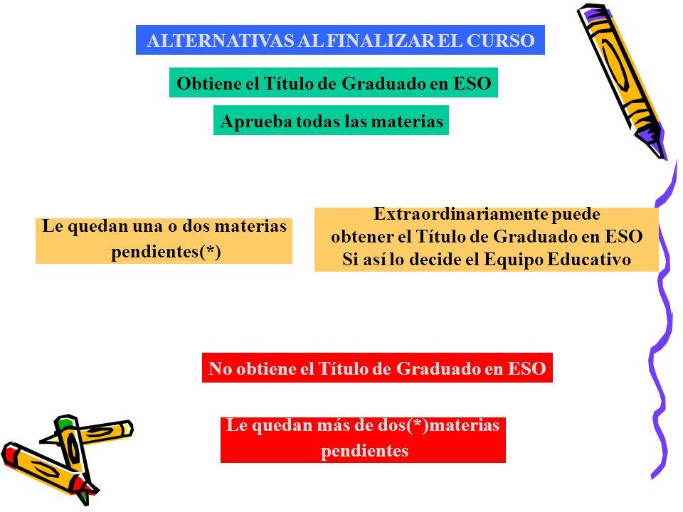 ALTERNATIVAS AL FINALIZAR EL CURSO