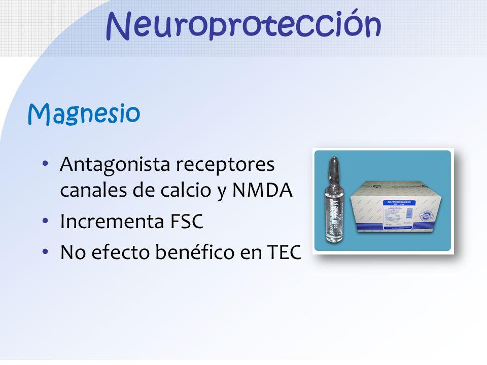 Neuroprotección Magnesio