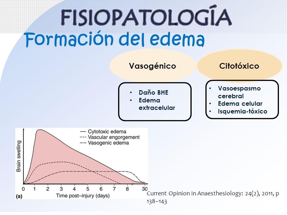 FISIOPATOLOGÍA Formación del edema Vasogénico Citotóxico