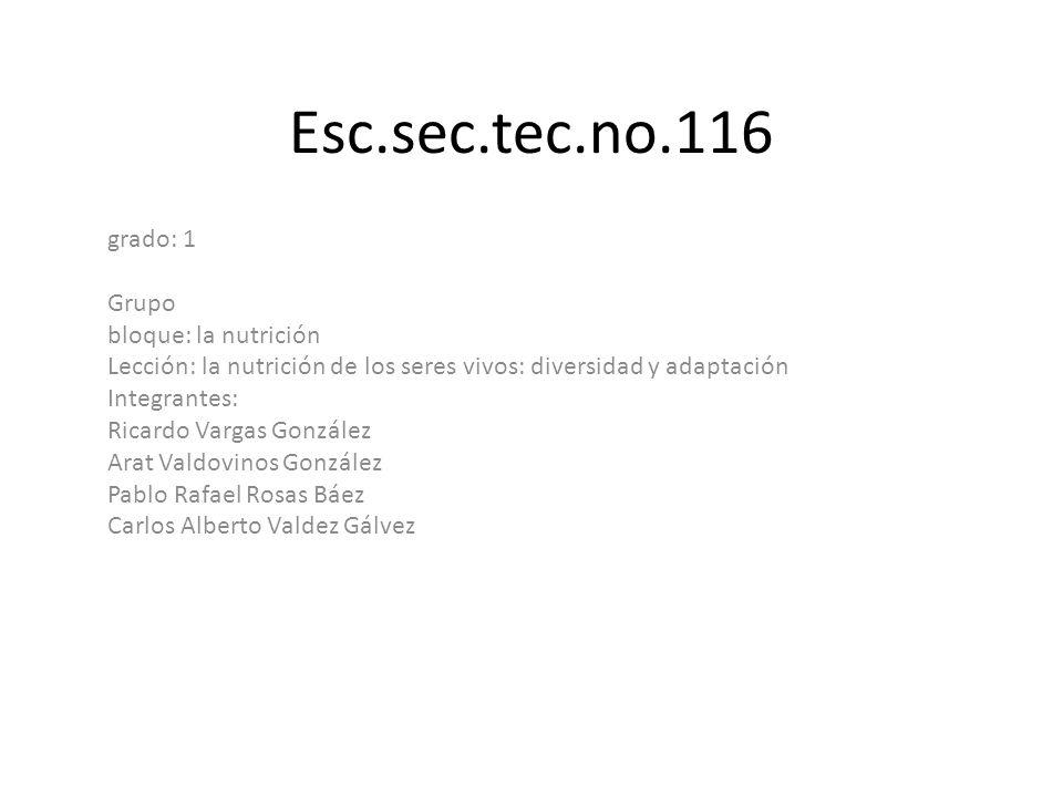 Esc.sec.tec.no.116 grado: 1 Grupo bloque: la nutrición